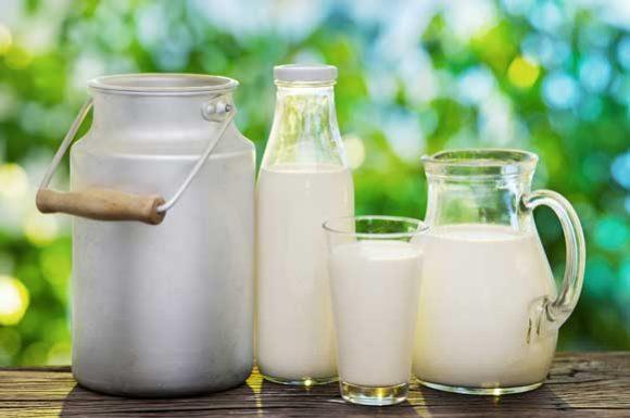 leite_tipos