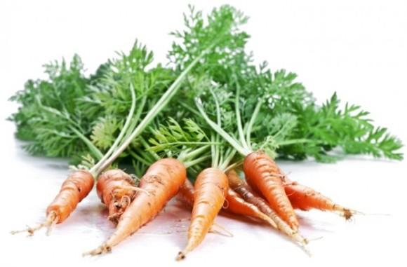 folha-de-cenoura